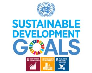 Obiettivi di sviluppo sostenibile (Sustainable Development Goals)